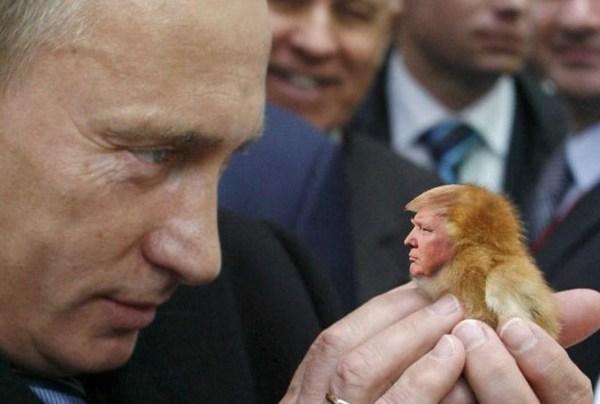トランプ大統領とプーチン大統領.jpg