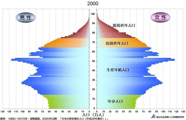 人口ピラミッド2000年.jpg