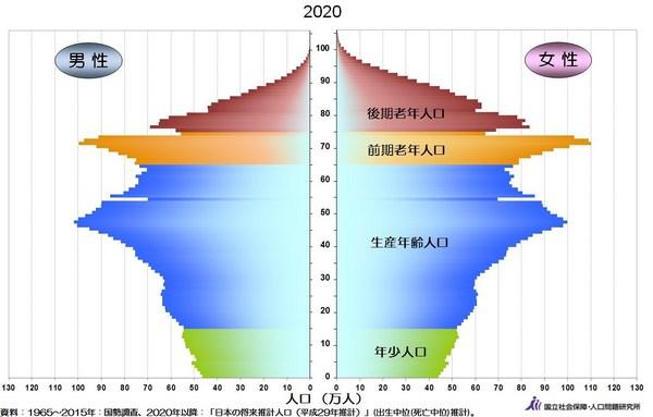 人口ピラミッド2020年.jpg