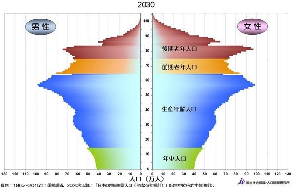 人口ピラミッド2030年.jpg