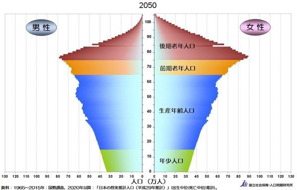 人口ピラミッド2050年.jpg