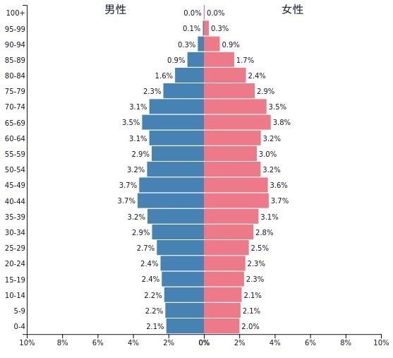日本人口ピラミッド.jpg